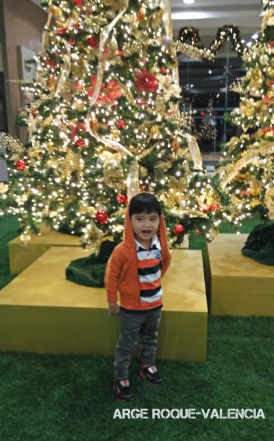 In the photo above, Louiji posed by the glistening Christmas trees at the activity center.