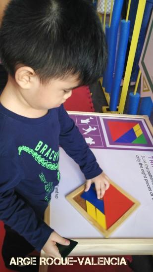 Science Circus - Solving Tangrams